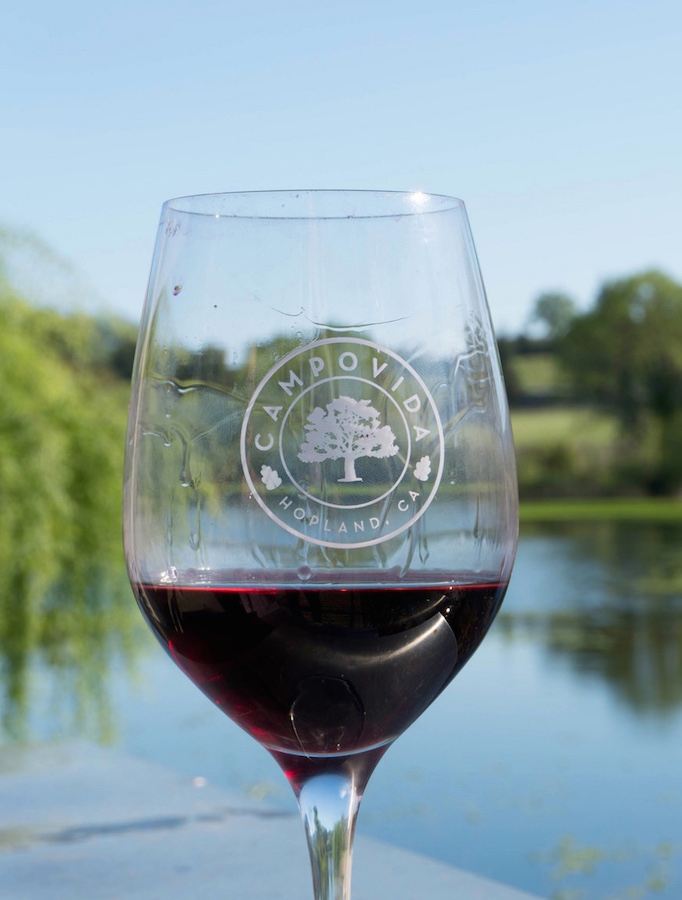 Travel Hopland | Wine, Wine & More Wine