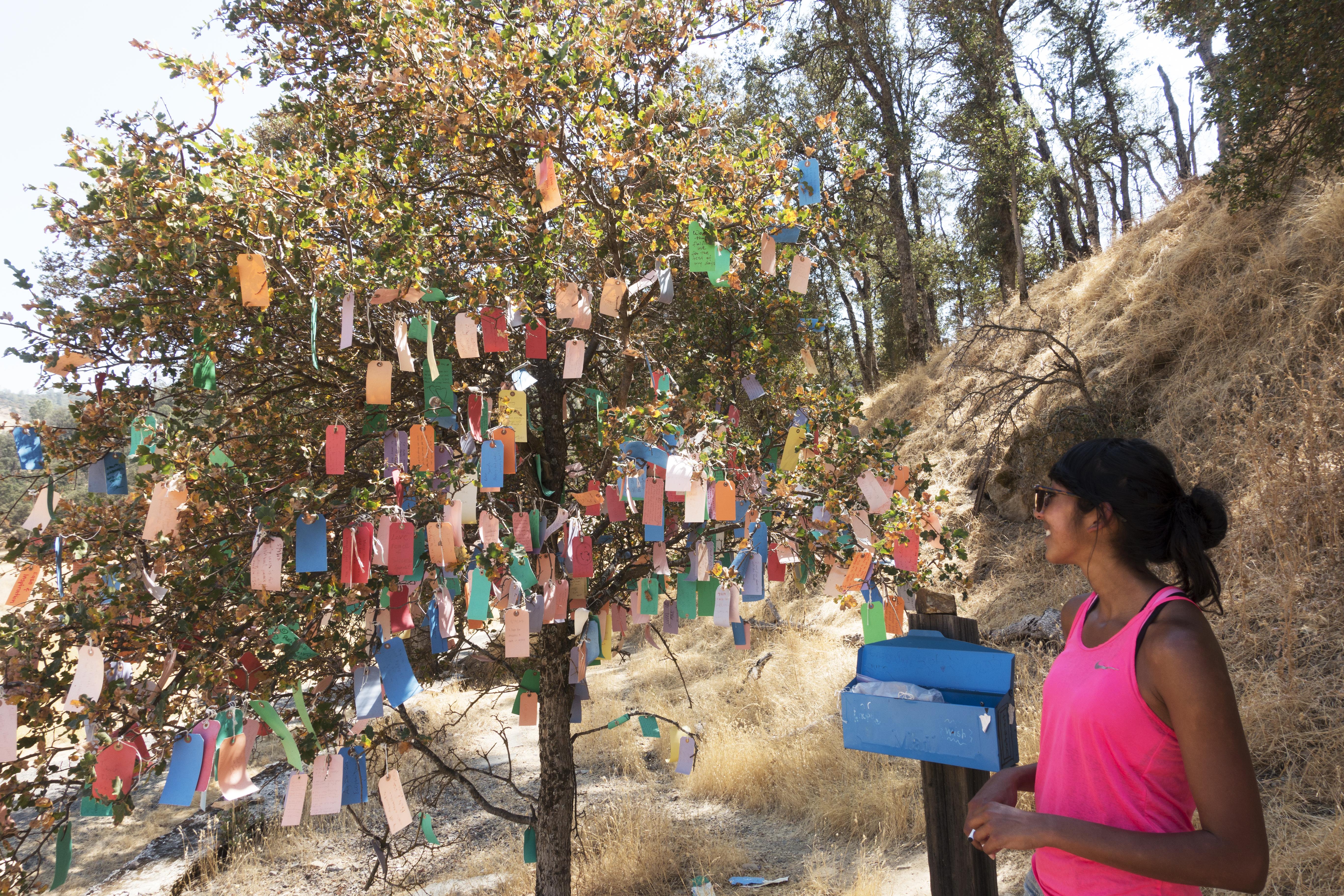 Camping Wilbur Hot Springs // Shikha la mode