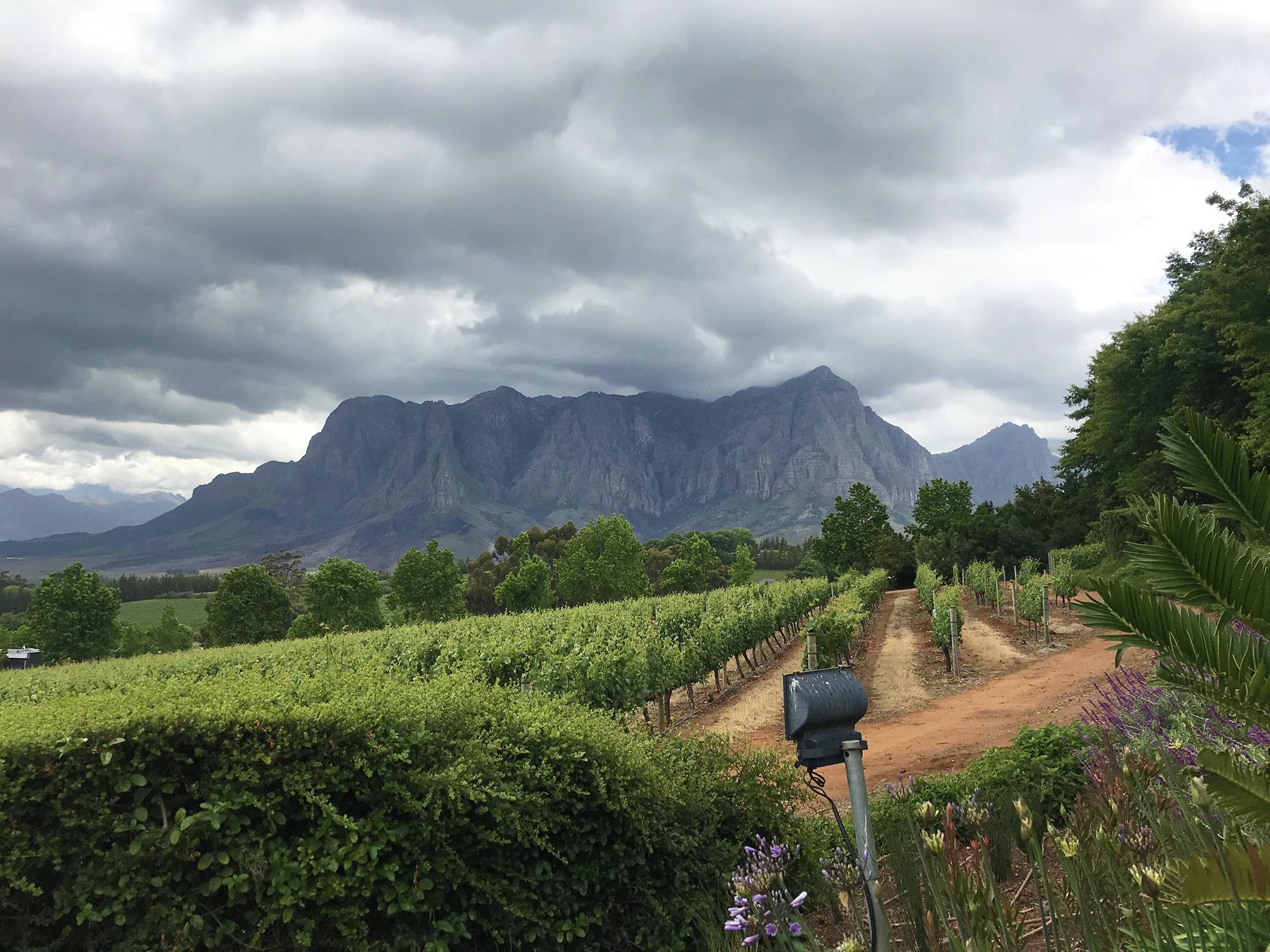 Cape Town // Shikha la mode // itinerary