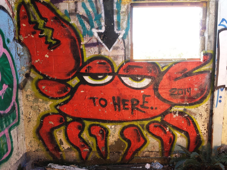 Graffiti Sweeney Ridge Trail Pacifica