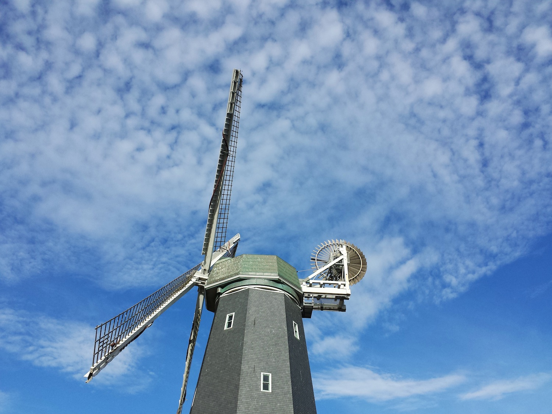 Windmill Golden Gate Park