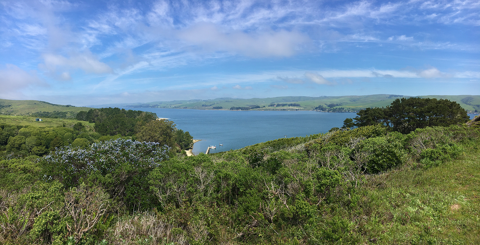 Tomales Bay Hiking