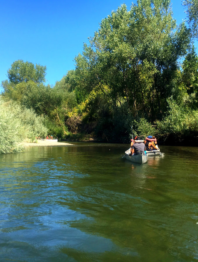 Russian River canoeing