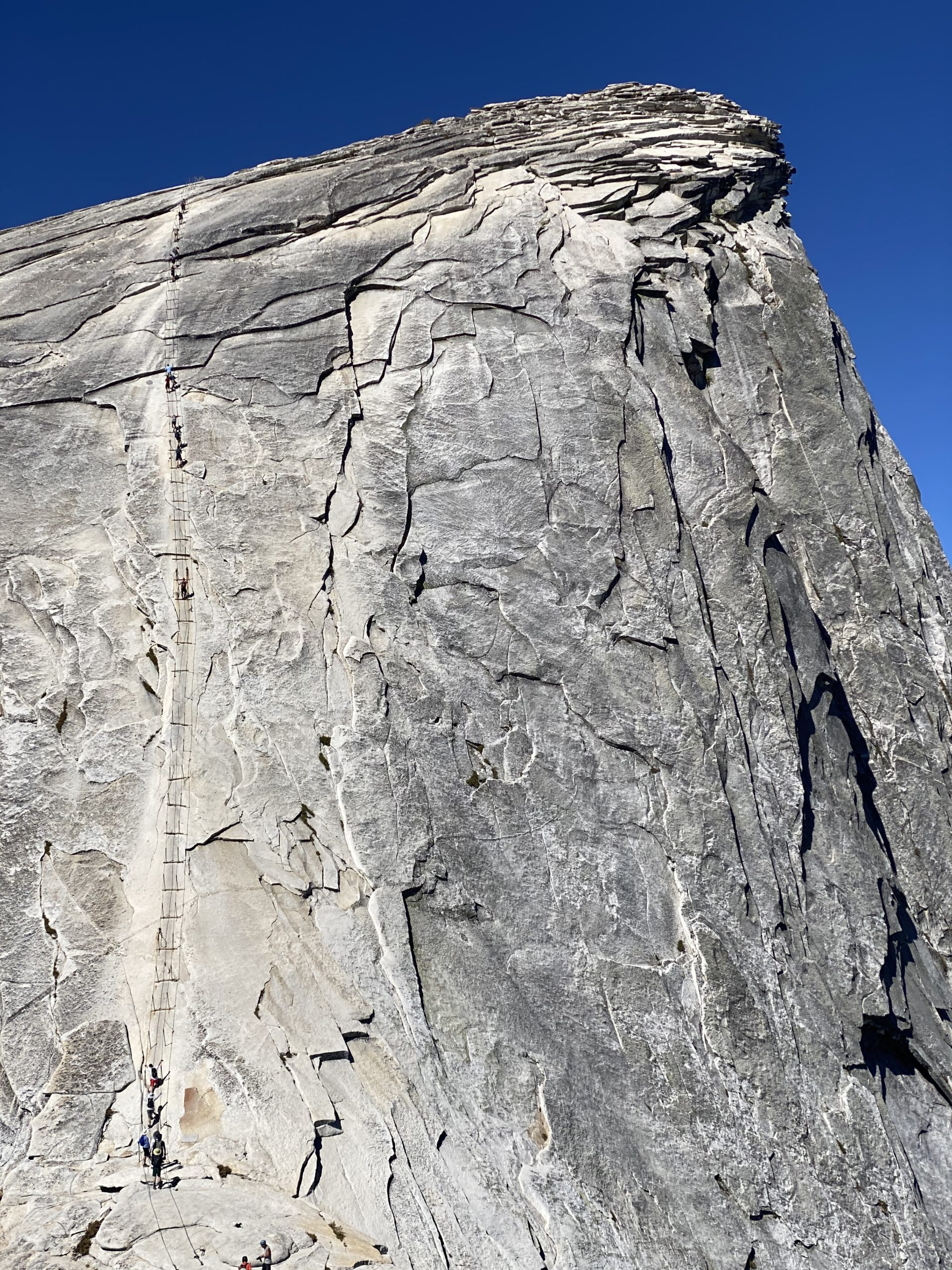 half dome cables during covid