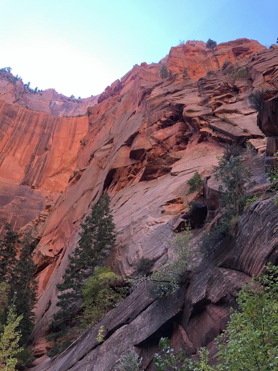 Utah road trip: Taylor Creek